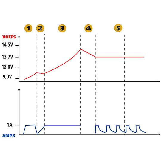 Allenatore Batterie Amperomatic Trainer Lampa 6/12V